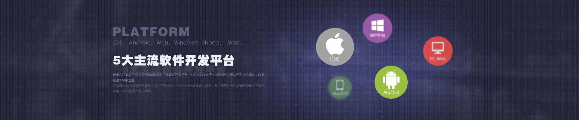 app软件定制开发服务