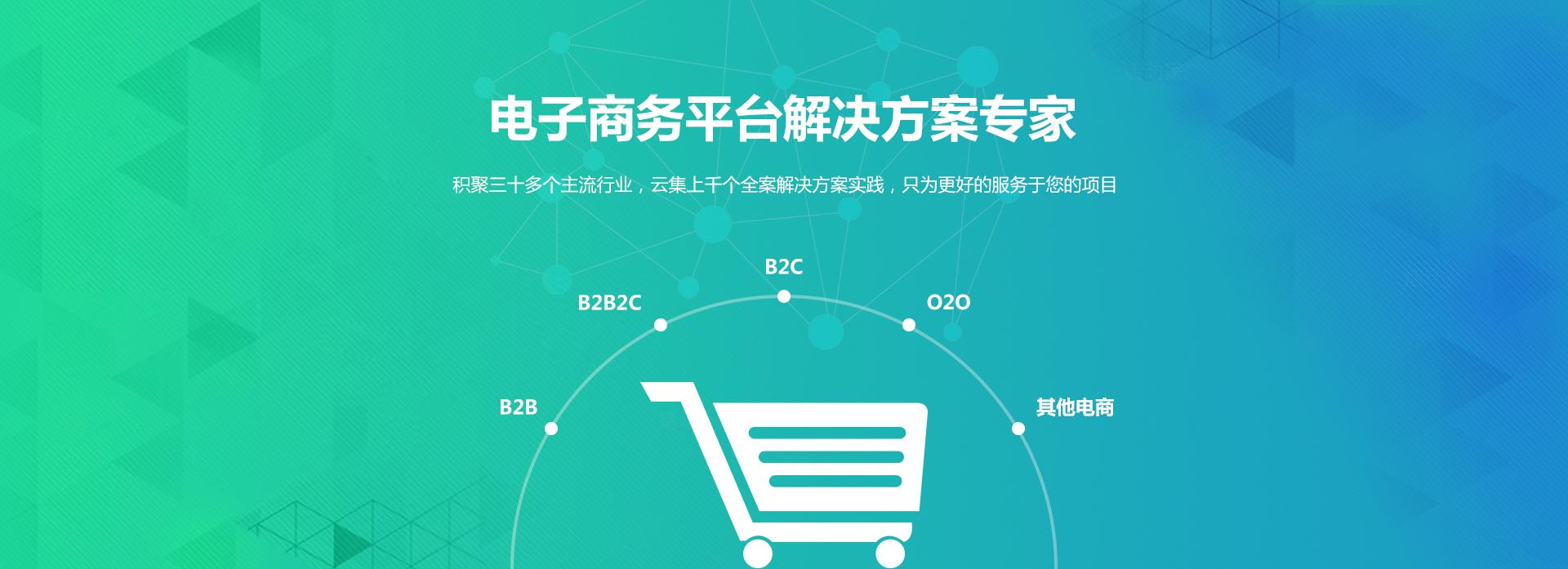 企业级电子商务平台开发解决方案服务
