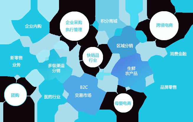 选择数商云轻松实现B2C电商系统平台多维度营销模式